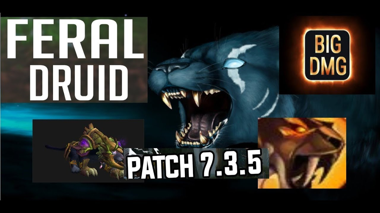 Feral Druid Guide Aoe St Rotation 7 3 5 How To Maximise Dps Youtube