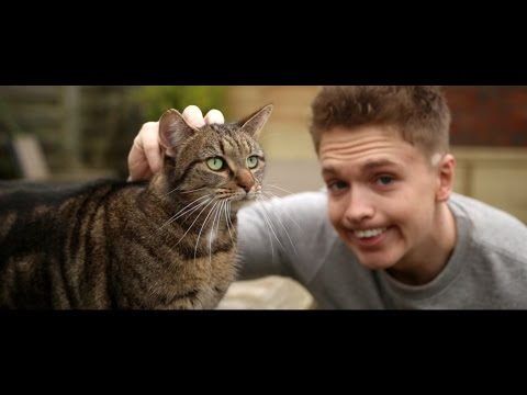 Joe Weller  Kitty Music Video