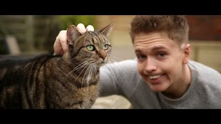 Joe Weller - Kitty (Music Video)