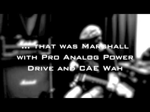 Marshall 2204 ´81