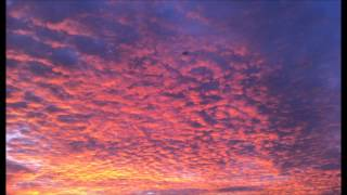 Grieg - Morning Mood (flute)