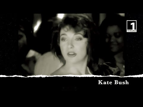 1tribute2    Kate Bush (2019) - A Tribute to Kate Bush