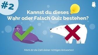 Wahr oder Falsch Quiz #2