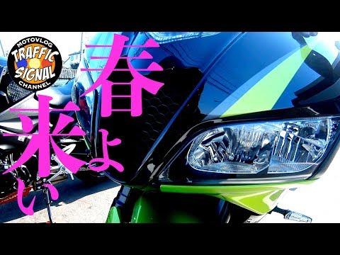 【TS Motovlog #95】春よ来い お花見ツーリング 河津桜を見に行った  CBR600RR GSX-S1000 【モトブログ】