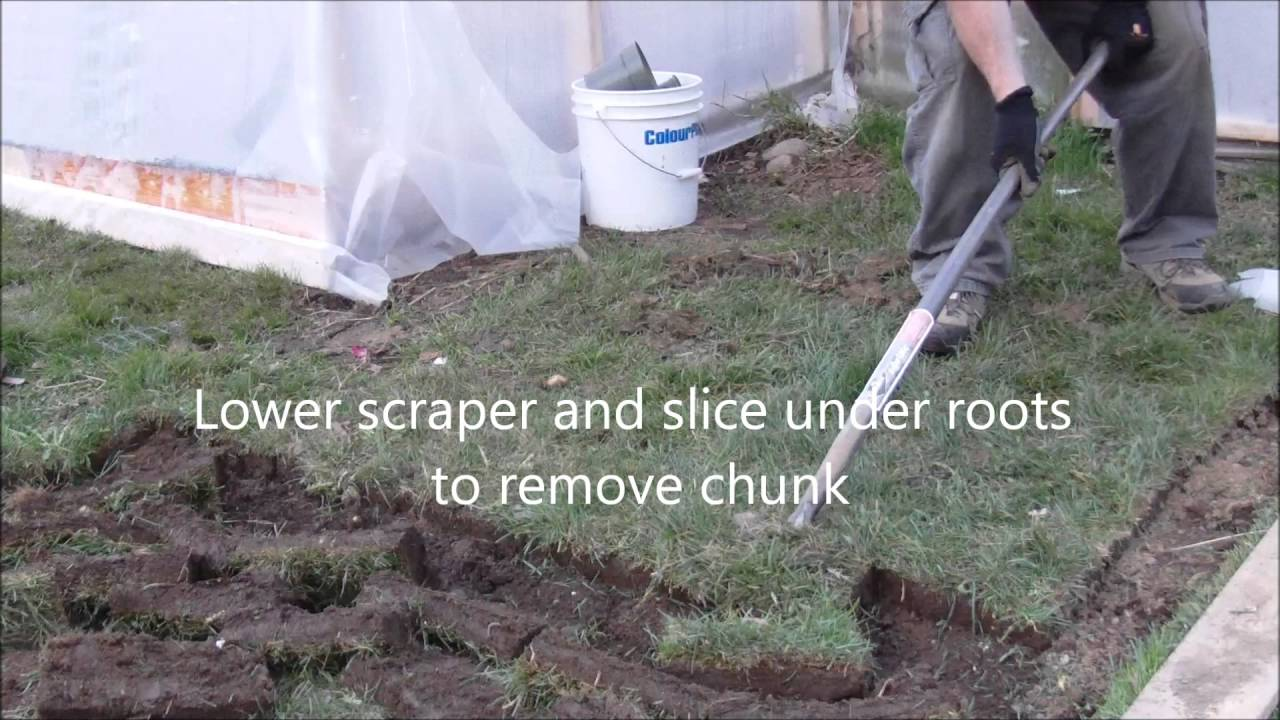 Charmant How To Remove Grass