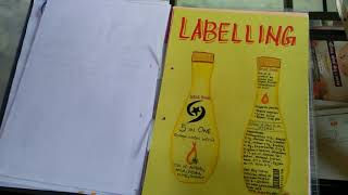 Business Studies Class 12 Project On Marketing Management On Shampoo