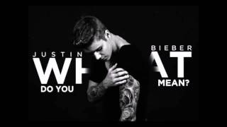 Justin Bieber - What Do You Mean ONE HOUR LOOP (1H LOOP)