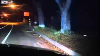 Idiots Cause Deer to Get Hit By Car