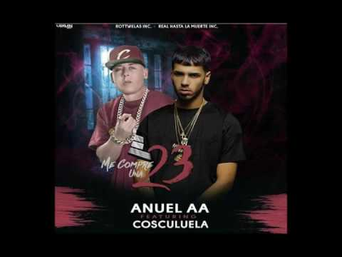 Cosculluela Ft Anuel - 23 (Sucker For Pain)