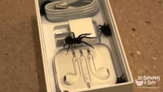 Iphone 6 Gold Unboxing Spider Attack!