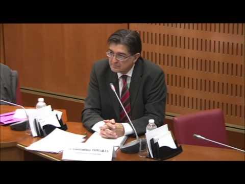 ANEHJ - Audition de la Commission Européenne sur les professions juridiques réglementées