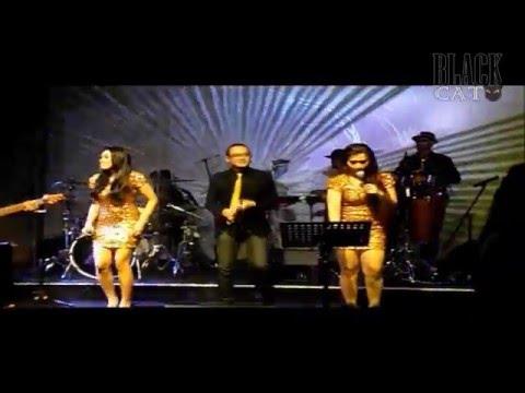 Sewa Band Top 40 Jakarta