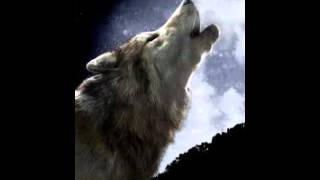 acid wolfpack ringtone