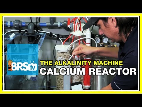 Week 32: Calcium reactor on the BRS160? You decide! | 52 Weeks of Reefing #BRS160