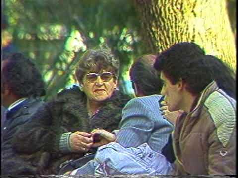 La Metrópoli de Santiago (1985) de Televisión Educativa USACH