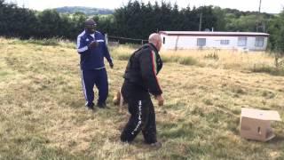 Police Dog Academy Kent M20