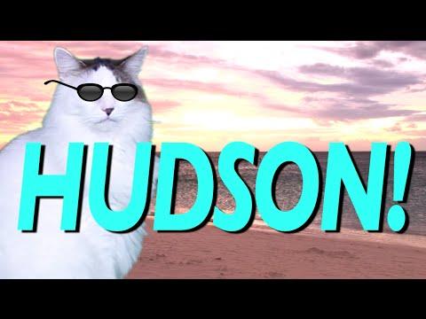 HAPPY BIRTHDAY HUDSON! - EPIC CAT Happy Birthday Song
