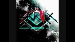 skrillex-my name is skrillex(acapella solo voz) primer video