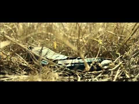 Смотреть фильм Судная ночь 3 (2016)из YouTube · С высокой четкостью · Длительность: 2 мин30 с  · Просмотров: 253 · отправлено: 25-7-2016 · кем отправлено: Sopranotv.ru Смотреть онлайн
