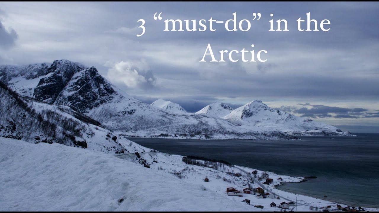 Arctic moments in the norwegian wilderness #beluga #norway #gopro8 #wildarctic