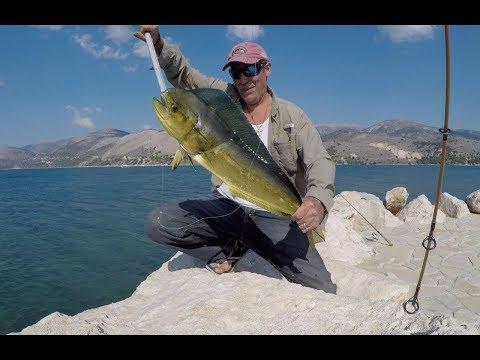 Mahi-Mahi from shore fishing greece