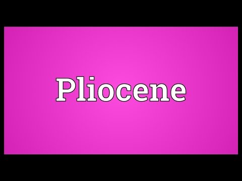 Pliocene Meaning