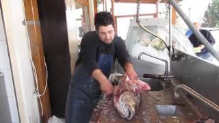 Balık Ayıklama Teknikleri 9 - Balıkcı Rüzgar