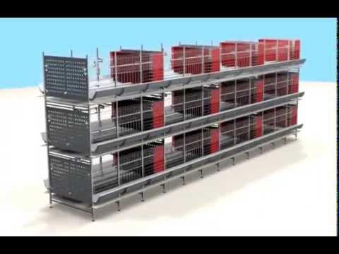 Клеточное оборудование для содержания родительского стада кур и петухов