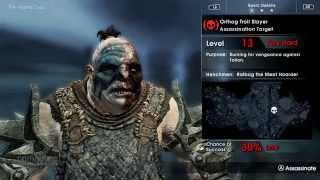Mittelerde: Mordors Schatten - Assassin