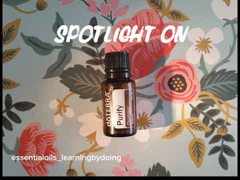 spotlight-on-purify-essential-oil-blend