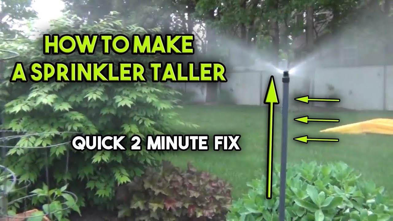 How To Raise A Sprinkler Head Youtube
