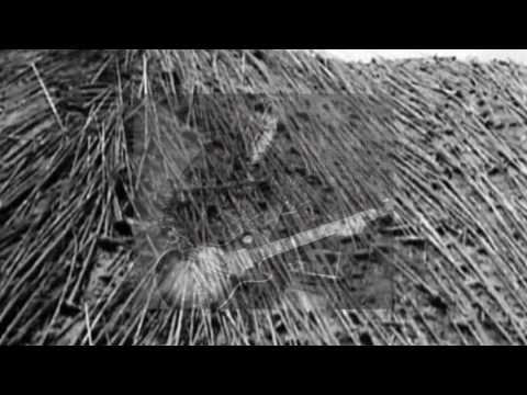 Satyricon - Black Lava