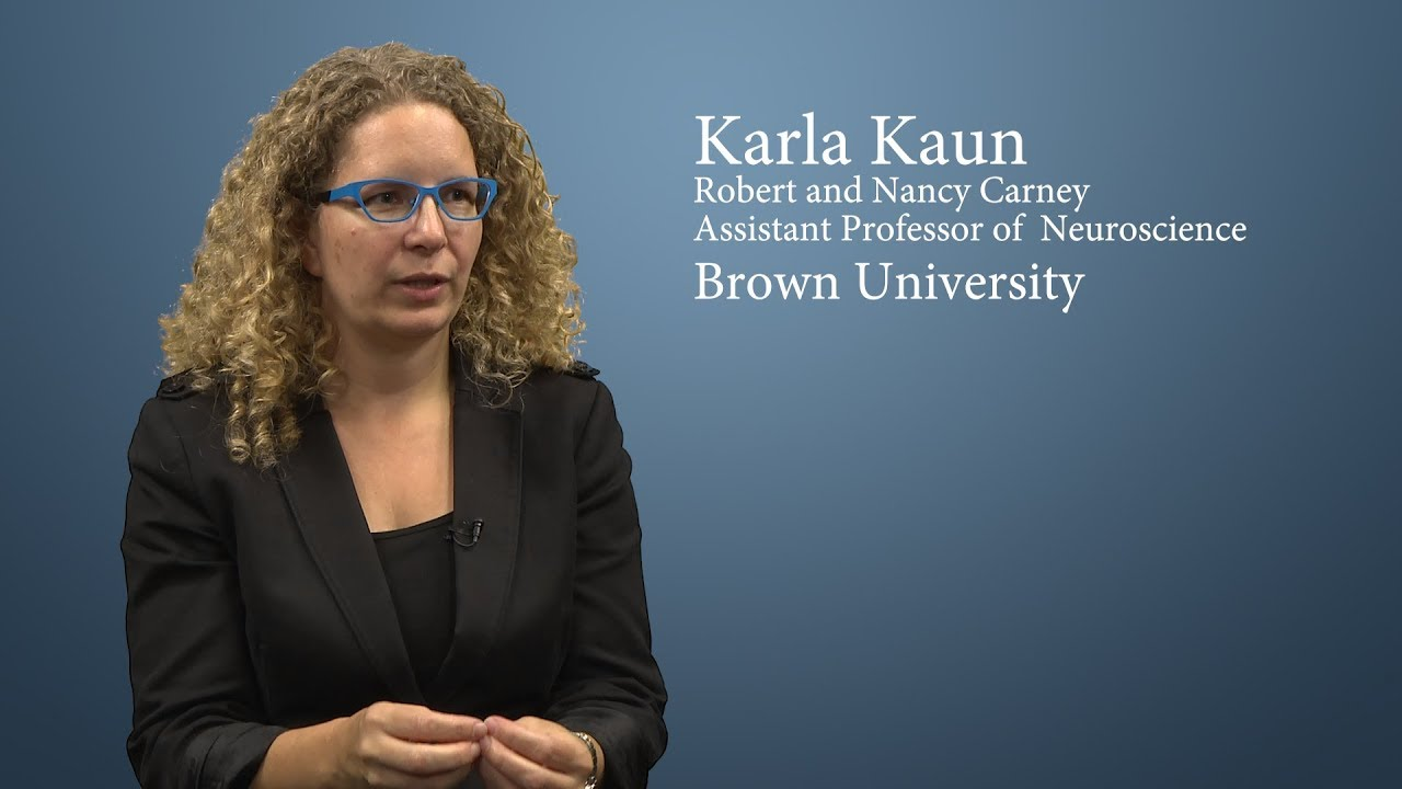 Faculty Spotlight on Karla Kaun, PhD
