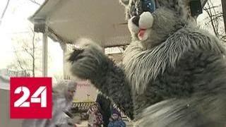 Смотреть видео Коньки, современная хореография и выставка страхов: афиша на выходные - Россия 24 онлайн