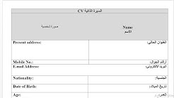 مجموعة نماذج سيرة ذاتية بالعربية والفرنسية جاهزة للتحميل مجانا