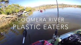 Coomera River Fishing Tarpon, Flathead and Sting Ray Using Soft Plastics on Dragon Kayaks