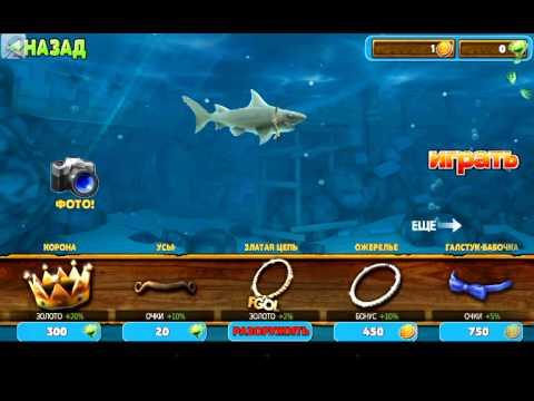 Игры Акулы флеш игры на OnlineGuru