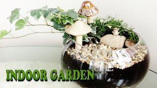 Diy Garden Tutorial! Great Diy Project! Great Room Decor! Idea! Best Diy Gift Idea