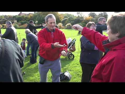 RHS Garden Wisley Conker Challenge  (Guiness Book of Records)