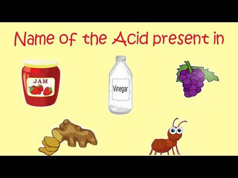 General Knowledge Questions || Name of the Acid present in Grapes, Jam, Ant, Vinegar, Ginger