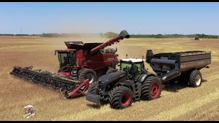 2020 WHEAT HARVEST with WALTER FARMS & HARVESTING