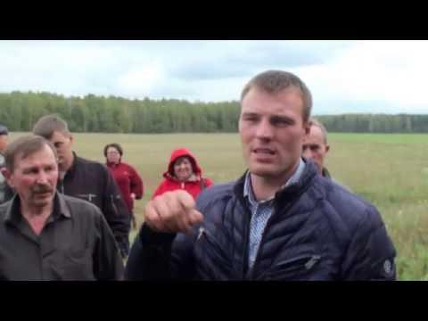 Пасеки белорусов.  Гращенко М.В.