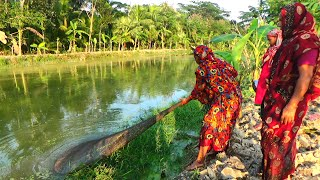 Net Fishing Traditional cast net fishing in village Fishing with a cast net Part 98