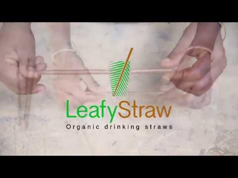 Evlogia Eco Care Promo Video