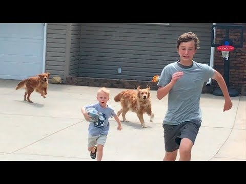 Thumbnail: Drive by Dunk Challenge (Chased by dogs) | That's Amazing