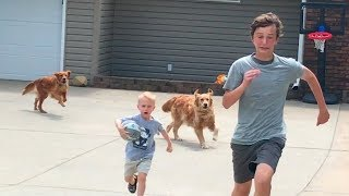 Drive by Dunk Challenge (Chased by dogs) | That's Amazing