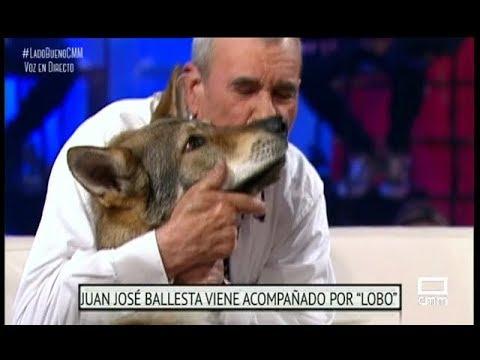 El niño lobo de Sierra Morena, Marcos Rodríguez Pantoja  El Lado Bueno de las Cosas