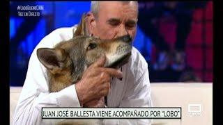 El niño lobo de Sierra Morena, Marcos Rodríguez Pantoja - El Lado Bueno de las Cosas