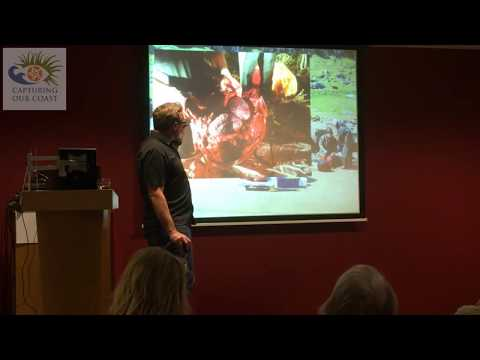 CoCoast - Lecture by Dr Andrew Brownlow | Scottish Marine Animal Stranding Scheme