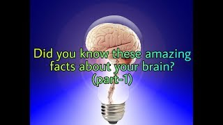 Most amazing facts about human brain (part-1)